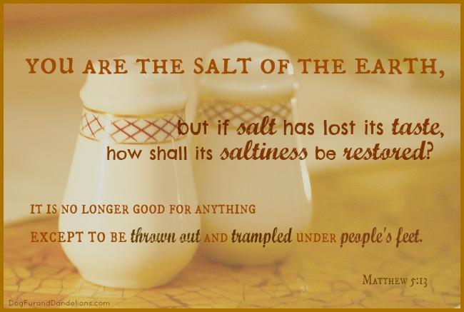 The Church and the Salt